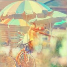 Beach / holiday / bicycle