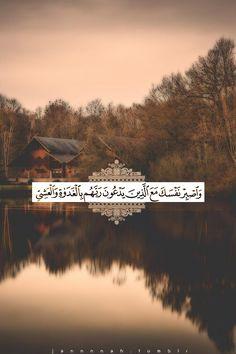 الكهف واصبر نفسك مع الذين يدعون ربهم