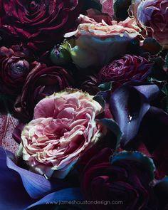 Flower Series 2, NYC 2014