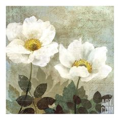 Anemone II Giclee Print by Keith Mallett at Art.com