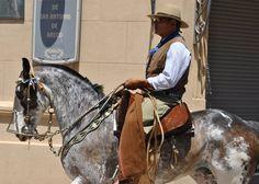 Desfilando Gaucho, Paint Horses, Akhal Teke, Horse World, Night Owl, Equine Photography, Horse Breeds, Gold Leather, Dressage