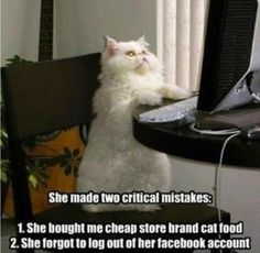 """She made two critical mistakes:  1. She bought me cheap store brand cat food.  2. She forgot to logout of her Facebook account."""