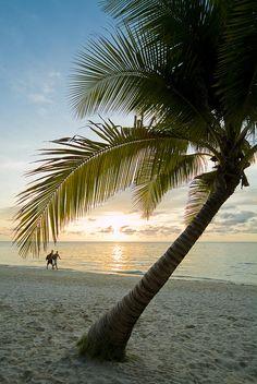 Honduras, Roatan Island,  West Bay