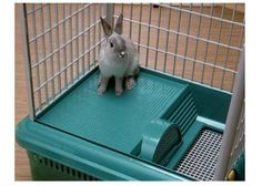 1000 images about large indoor rabbit hutch on pinterest for Super pet hutch