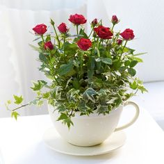 Display flowers in a teacup - would also make a great girlie gift.