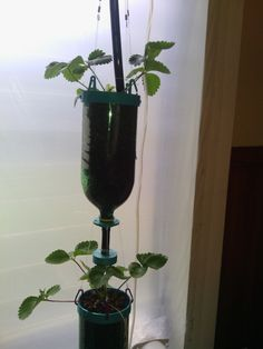 Free Hydroponics System - All 3Dponics source files - 3D-printable Modular Herb, Vegetable or Flower Urban Growing System - Recycle and Reuse Old Bottles - Eat Healthy and Organic Food by Pauleneedham. Based on a design by 3dprintler.