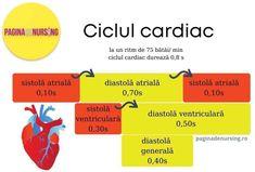 Metabolism, School, Health, Medicine, Culture, Cardiology, Health Care, Salud
