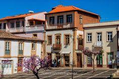 Torre de Moncorvo | Turismo en Portugal