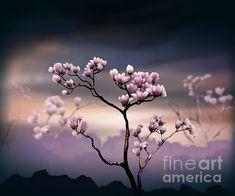 Bedros Awak - Pink Magnolia 'Dark Version'