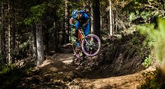 Single trail zell am ziller