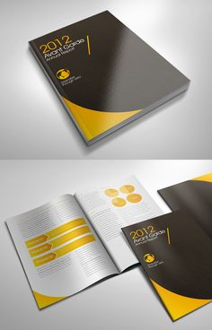 Great annual report design by Singapores Lemongraphic.