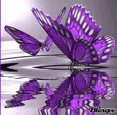 mariposa lila Picture #115014594 | Blingee.  blingee.com