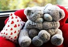Happy Teddy Bear Day Teddy Bears For Valentines Day: Hey guys Today is Happy teddy Day. And we wish you a very Happy Teddy day. Its 10 February today