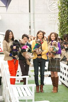 Rie Hasegawa, Mayuko Kawakita, Noriko Maeda and Natsuki Kato pose with some cute companions at today's Dog Walk event at our Omotesando store in Japan