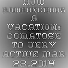 How rambunctious a vacation: Comatose to Very Active  Mar 28,2014