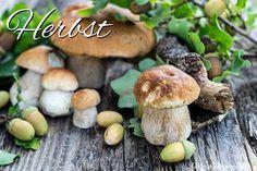 Herbst Stuffed Mushrooms, Health Fitness, Vegetables, Food, Autumn, Simple, Nice Asses, Love, Print Templates