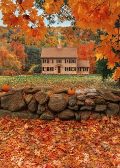 Fall is fast approaching here in New England, and we are beyond excited about our list of activities for September and October! Indoor Outdoor, Fall Inspiration, New England Fall, Autumn Scenes, Autumn Cozy, Happy Autumn, Autumn Aesthetic, Fall Pictures, Fall Images