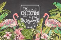 Graphic Design - Graphic Design Ideas - Hawaii collection Mega Pack & logos by Graphic Box on Creative Market Graphic Design Ideas : – Picture : – Description Hawaii collection Mega Pack & logos by Graphic Box on Creative Market -Read More – Pencil Illustration, Graphic Illustration, Watercolor And Ink, Watercolor Flowers, Web Design, Graphic Design, Design Set, Typographie Fonts, Map Creator