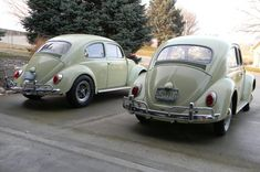 Stock and Modified 1962 VW Bug Survivors