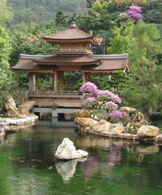 A goldfish pond and a pagoda in Nan Lian Garden, one of Hong Kong's most beautiful sightseeing spots (Great travel tips for Hong Kong and Macau)