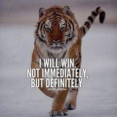 Inspirational And Motivational Quotes : 29 of the Best Quotes on Success and Life. - Hall Of Quotes Wisdom Quotes, Me Quotes, Motivational Quotes, Inspirational Quotes, Qoutes, Strong Quotes, Tough Girl Quotes, Daily Quotes, Tiger Quotes