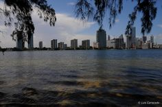 Miami Nikon