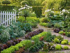 organize geometrically vegetable garden