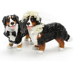 Bernese Mountain Dog Cake Toppers...no way! Why didn't I find these for our wedding??