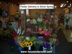 25 best all usa states flowers florist images on pinterest floral flower delivery in silver spring address 4109 annapolis rd maryland mightylinksfo
