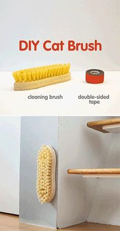 ♥ DIY Cat Stuff ♥ This DIY cat brush project will leave your kitten feline fine! Grooming your cute kitty is healthy for her coat and promotes bonding. Plus, it reduces hairballs and shedding while helping to spread natural oils over your munchkin's coa Crazy Cat Lady, Crazy Cats, I Love Cats, Cute Cats, Animal Projects, Cat Furniture, Furniture Dolly, Furniture Removal, Furniture Stores
