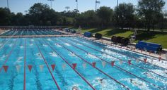 Stanford University, in Palo Alto, is located between San Francisco and San Jose. The Swim Camp is designed for competitive swimmers (ages Maximize your swimming potential at Stanford Swim Camp. Stanford Swimming, Swim Camp, Stanford University, Swimming Pools, United States, Camping Chairs, World, Swiming Pool, Pools