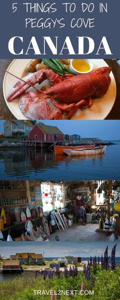 5 things to do in Peggys Cove - Nova Scotia. Peggy's Cove is one of the most photographed places in Canada. East Coast Travel, East Coast Road Trip, Orlando Florida, Fotos Do Canada, Canada Cruise, Canada Trip, Canada Canada, Nyc, Empire State Building