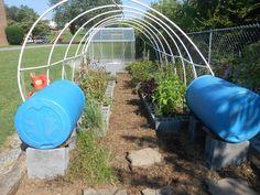 Our Garden at the Boys & Girls Club of Greeneville & Greene County #boysandgirlsclub #gardening