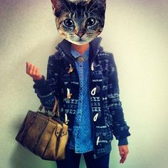 #fashion #cat