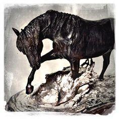 """Chapoteando"" lost wax bronze sculpture by Marcela Ganly #sculpture #artist #art #lostwax #horse #equine #marcelaganly #bronze"