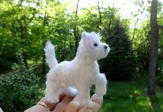 Westie Designer Dog Miniature