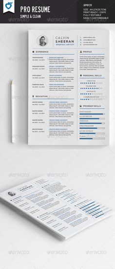 Professional Personal Resume Template Template, Creative resume - size font for resume