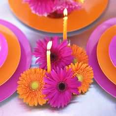pink and orange daisies