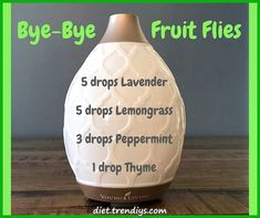 Essential Oils diffuser blend to rid your home of fruit flies! – Essential Oil … Essential Oils diffuser blend to rid your home of fruit flies! – Essential Oil Diffuser – Ideas of Essential Oil Diffuser Essential Oils Guide, Essential Oil Uses, Doterra Essential Oils, Homemade Essential Oils, Essential Oil Combinations, Diffuser Recipes, Essential Oil Diffuser Blends, Aromatherapy Oils, Aromatherapy Recipes