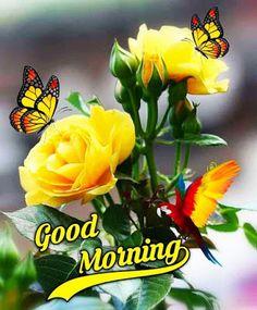 Good Morning Janu, Good Morning Love Gif, Good Morning Life Quotes, Good Morning Happy Sunday, Good Morning Roses, Good Morning Wallpaper, Good Morning Picture, Good Morning Flowers Pictures, Good Morning Friends Images