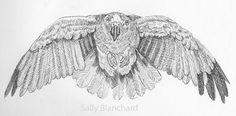Sally Blanchard - Pen Drawing Flying Panama Amazon