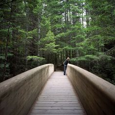 Redwood National Forest, Calif. 2007 - beautiful bridge - photo by Peter Baker