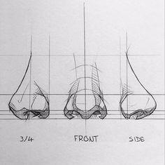 Disney Drawings Sketches, Art Drawings Sketches Simple, Pencil Art Drawings, Realistic Drawings, Anatomy Drawing, Anatomy Art, Nose Drawing, Drawing Stuff, Drawing Ideas