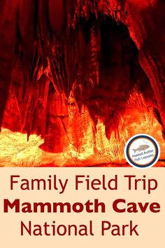 Did you know that here is a national park in Kentucky that consists of more 412 miles of caves? Check out this post to learn all about visiting Mammoth Cave! Mammoth Cave, Spring Break Trips, Best Family Vacations, Us National Parks, Field Trips, What To Pack, Summer Activities, Kentucky, Unit Studies