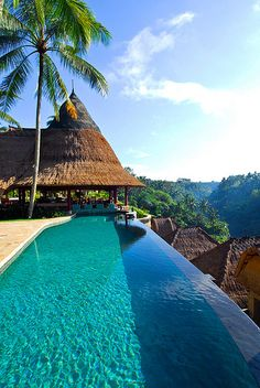 Pool at Viceroy Hotel in Bali, Indonesia (by purehotels). Why yes!! I'll take another fuufuu drink!