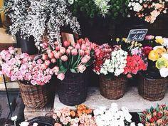 Pinterest: @odeezyy ♡