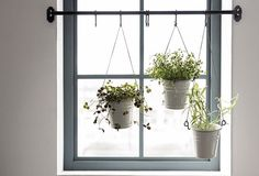 kitchen ideas – New Ideas Indoor Plant Wall, Hanging Plant Wall, Best Indoor Plants, Diy Hanging, Hanging Planters, Fintorp, Wooden Garden Planters, Fancy Houses, Cool Woodworking Projects