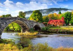 """With a name that translates as """"beyond the bridge"""", Tu Hwnt I'r Bont couldn't be more breathtaking if it tried. 21 Absolutely Charming Tea Rooms You Have To Visit Before You Die"""