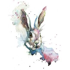 March Hare by Sarah Stokes Graphic Art on Canvas
