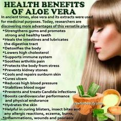 Aloe Vera Benefits are plentiful. Plexus X Factor ingredients include Aloe Vera for increased absorption of this powerhouse multivitamin. Get it at http://dawncooper.myplexusproducts.com/.